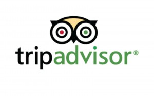 tripadvisor-logo-vector-download